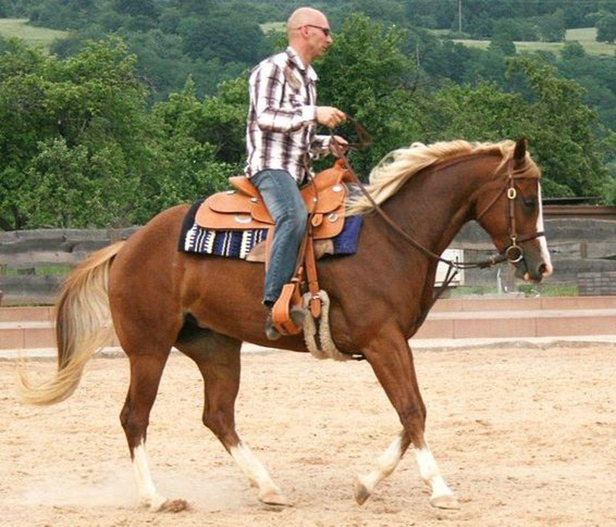 Western-style horseback riding