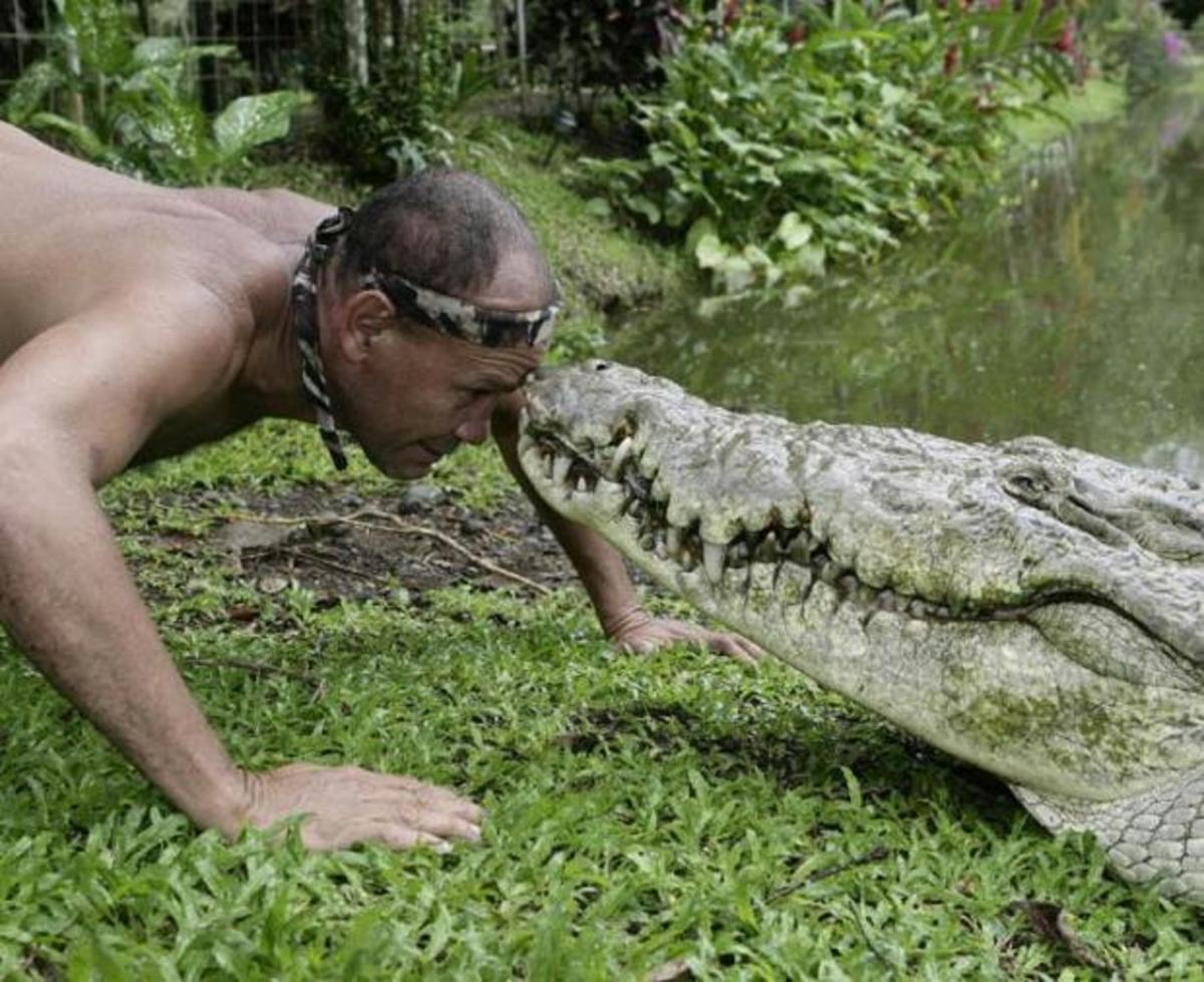 There's some crocodile whispering going on here.