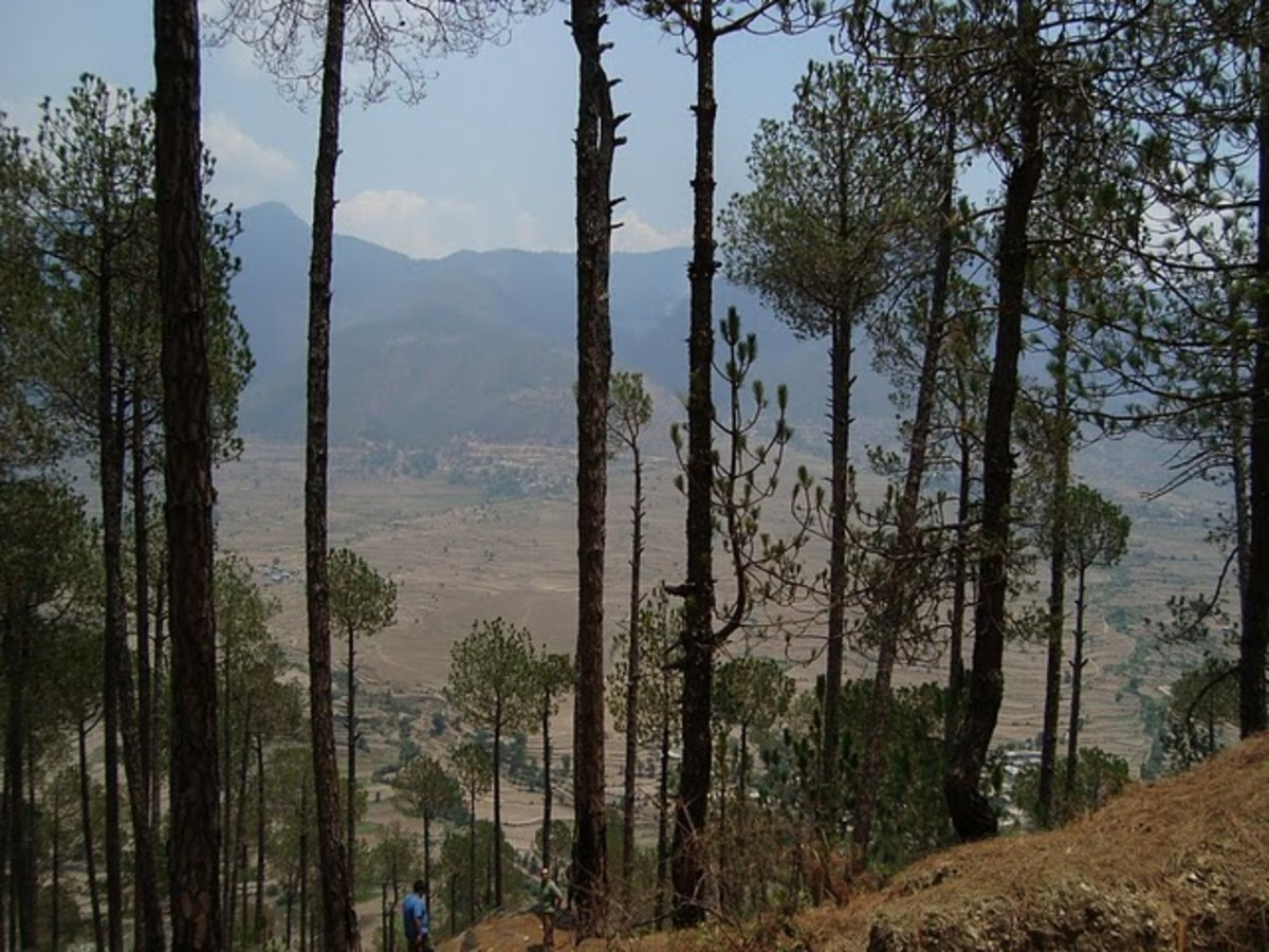 Beautiful scenic view of Mori.