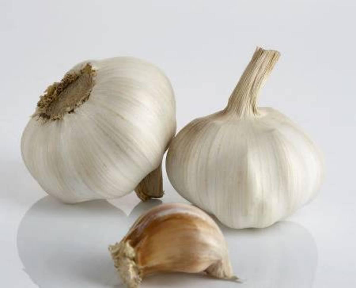 garlic-milk-a-medicinal-drink