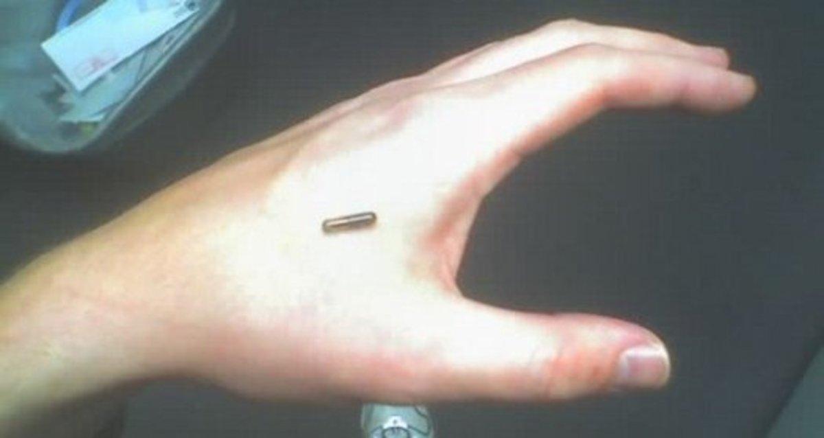 Human chip