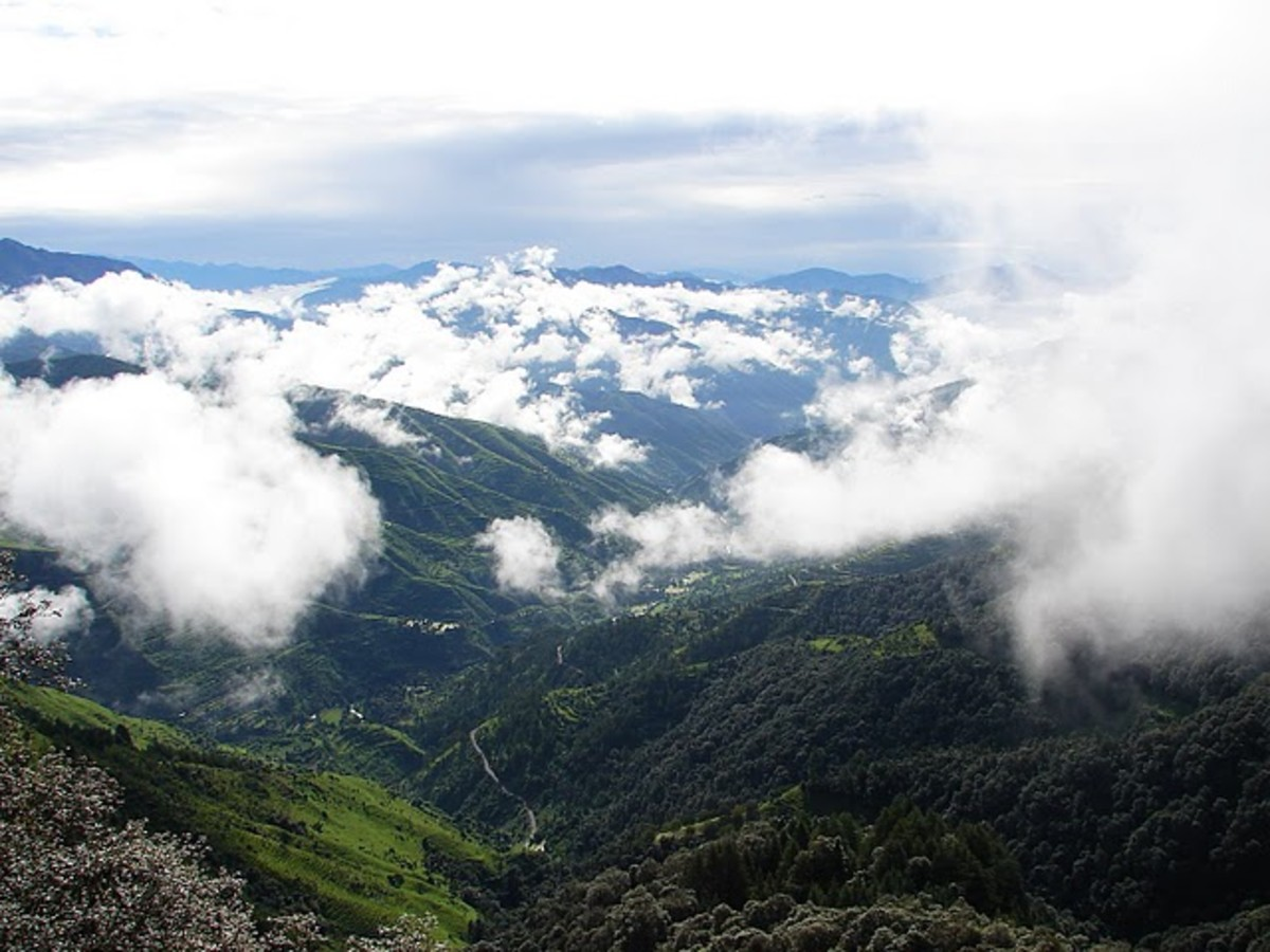 Photos of Chakrata - Over and above the clouds, the evergreen trees, lonely roads, beautiful mountains look like a sweet dream I took when I was a child and it seems that dream has come true when I visited Chakrata.