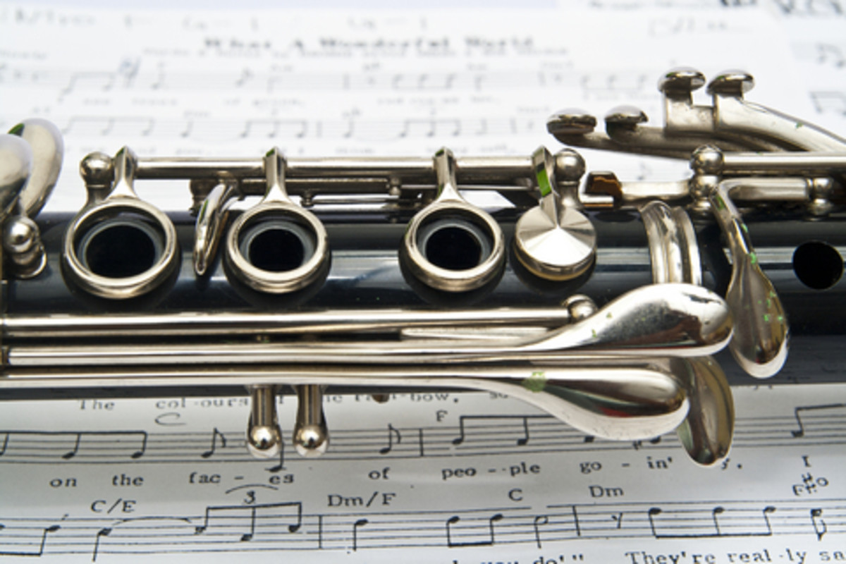 A soft polishing cloth used regularly on clarinet keys will prevent tarnishing caused by the oil from a player's hands.