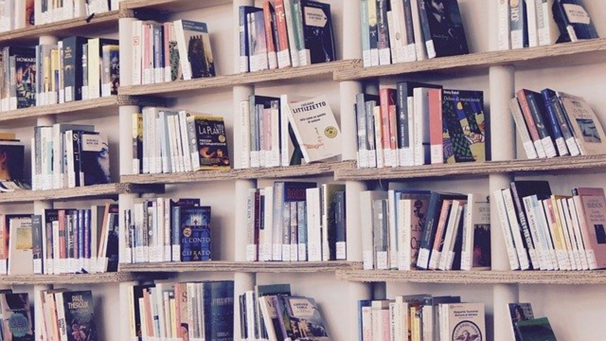 What to Do If the Library Loses a Book You Returned