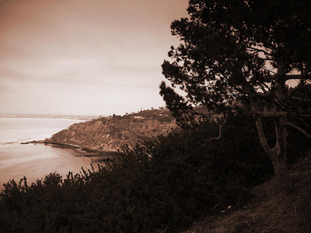 Ranchos Palos Verdes on the Peninsula