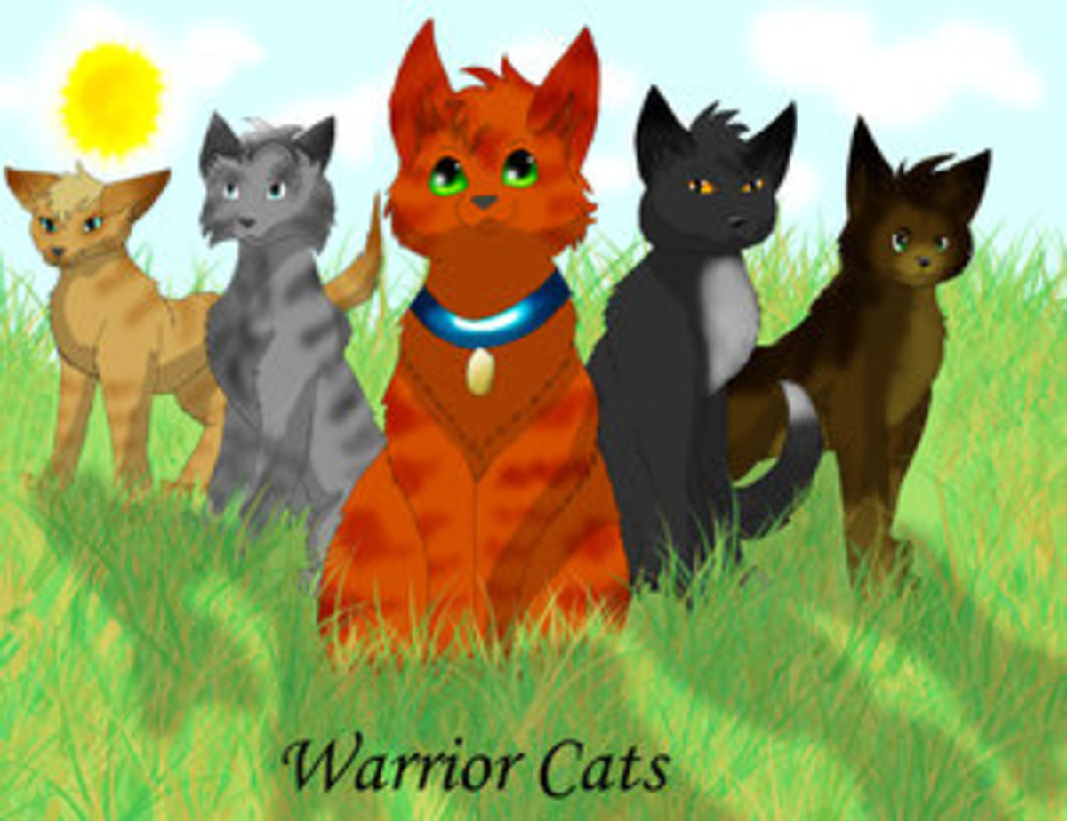 Warriors and Warrior Cats, the Book Series by Erin Hunter