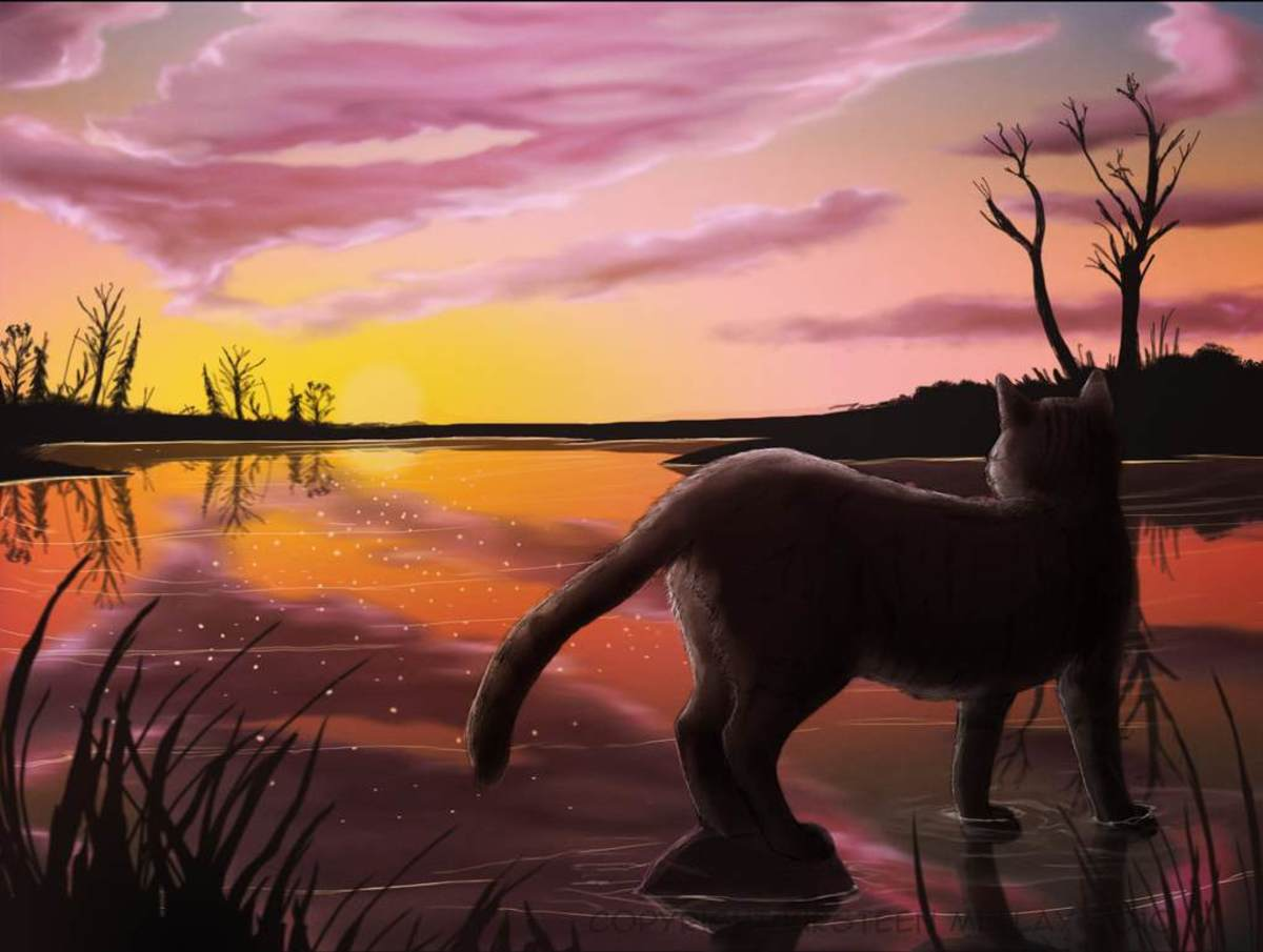 RiverClan Warrior Cat