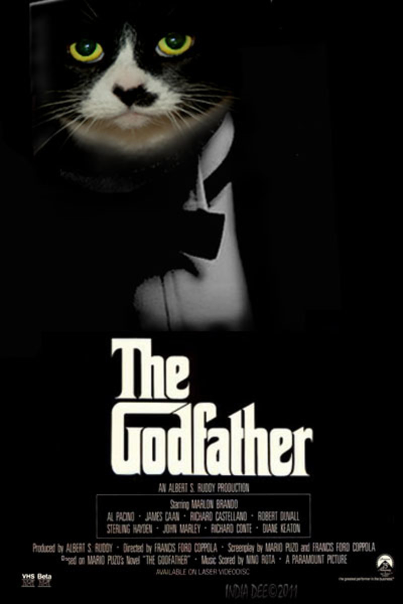 """Godfather Cat Poster""  When Princess Pretty Cat heard the boys talking about the power of the Godfather, she decided to take the chance her true identity would not be discovered. The old tomcats from the block still don't know her secret."