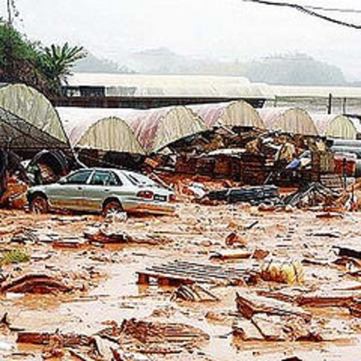 Can we do some actions to to stay away from the disaster ?