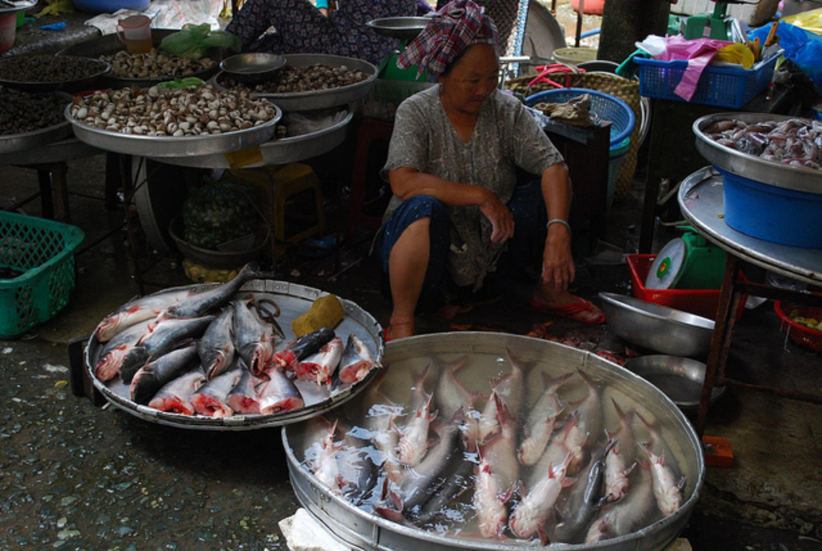 Basa Fish in the market
