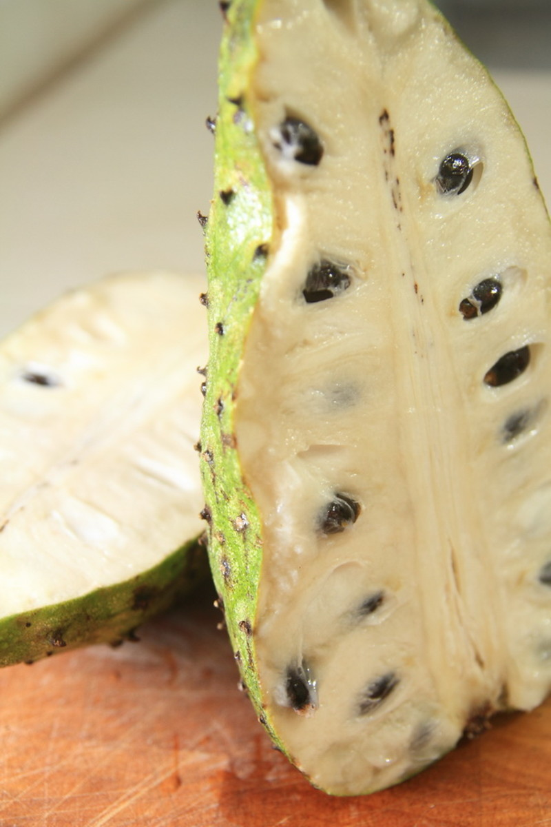 UK Cancer research into the Graviola/Soursop fruit