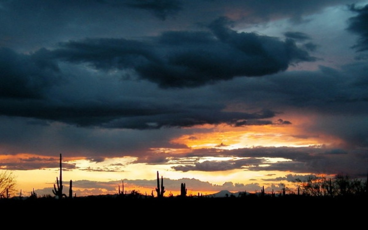 Standing for a moment to appreciate the sun setting behind the saguaros.
