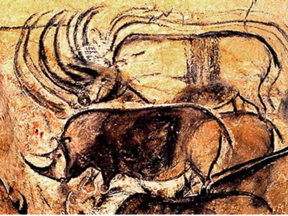 Rock paintings at Chauvet Cave in France