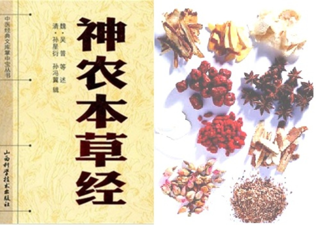 chinese-medicine-for-dummies