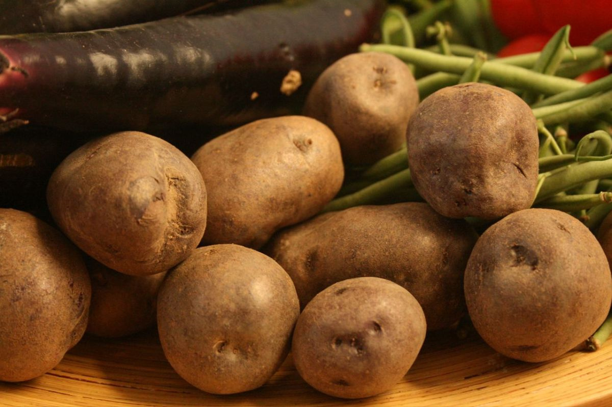 Potatoes - A big part of this Welsh recipe for Cawl