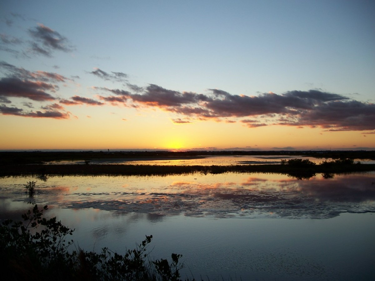 Sunset over the marsh on Merritt Island.