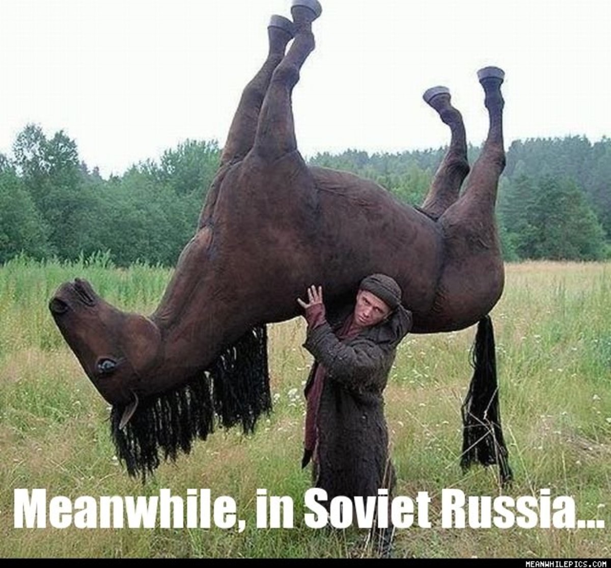 Why Are all Russians in Russia Crazy?