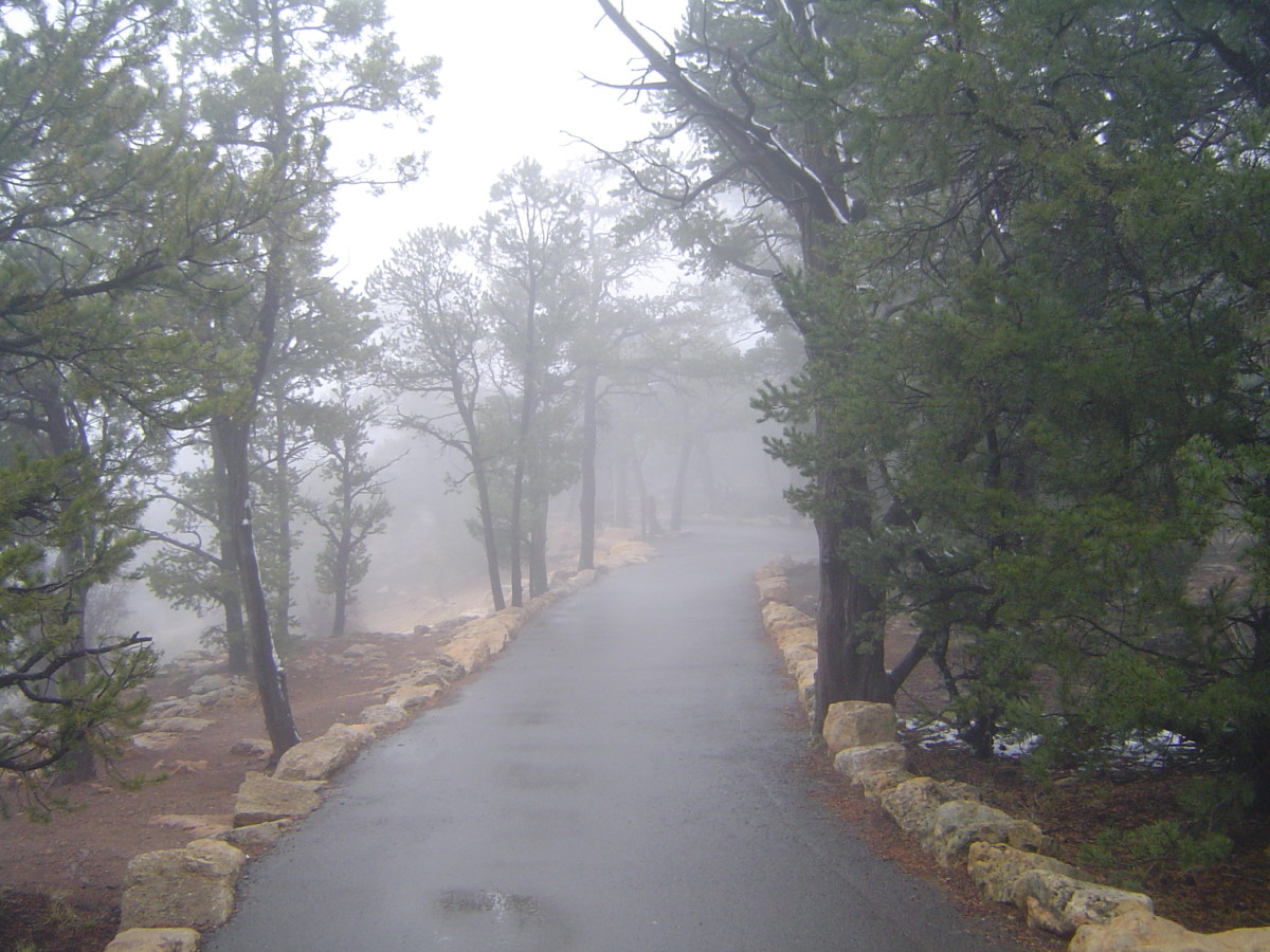 South Rim Trail in bad weather/fog