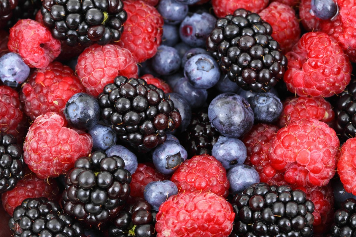 Blueberries and blackberries contain 25%, and 24% of the DV for vitamin K, respectively