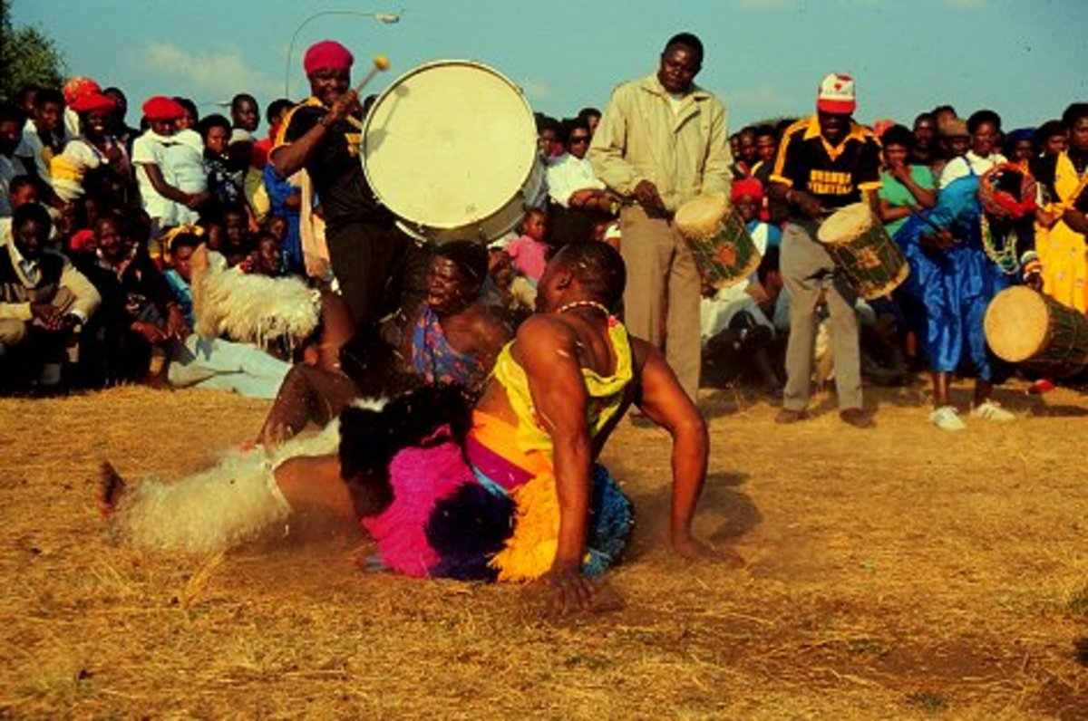 The Tsonga/Shangaan/ who live around the Limpopo along the Kruger National Park doing their traditional dance bumping from the ground in rhythm to the drums