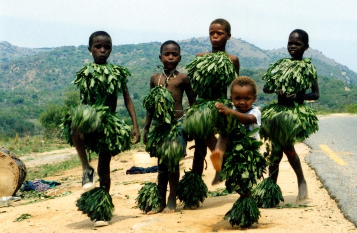 Swazi children dancers clad in natural fauna of their villages(Leaves)