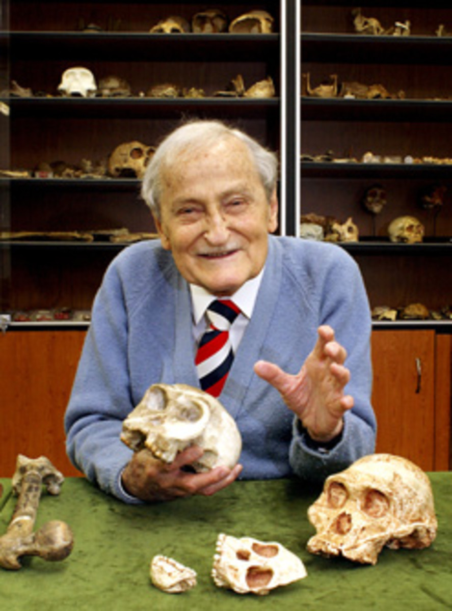 Prof. Phillip V. Tobias, Anthropologist siting in front of the skull and jawbone of the Taung Child, a famous specimen of Australopithecus Africanus