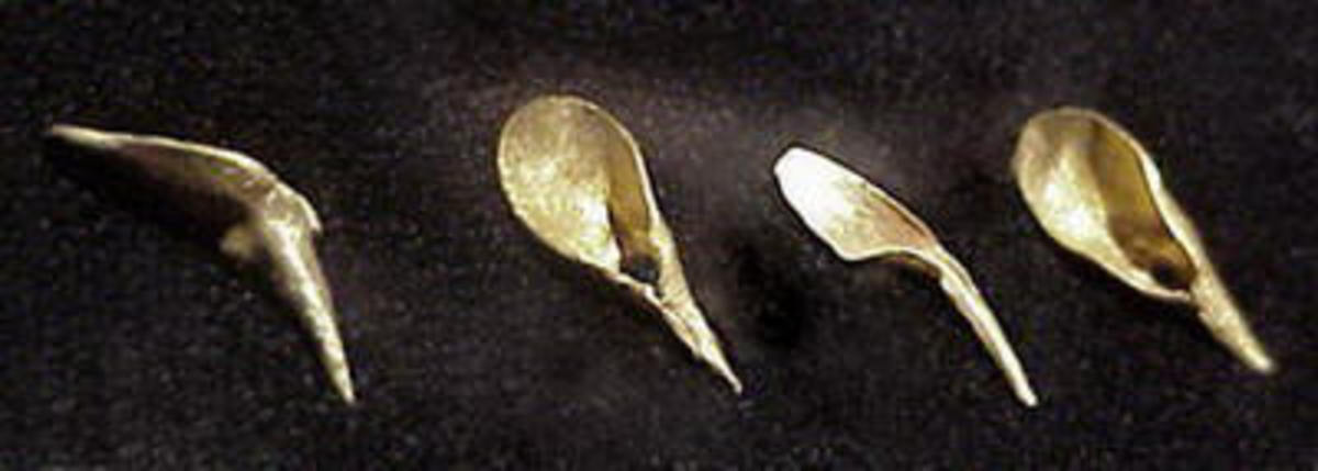 These were some of the artifacts found in the Mapungubwe Graves