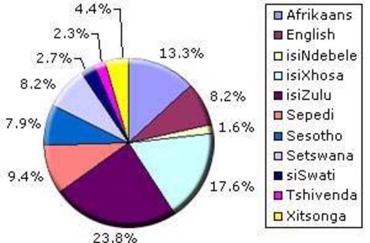 A Pie Chart of South African Languages plus percentages