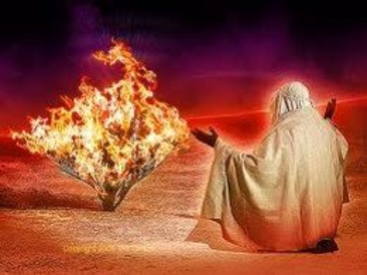Moses on Mount Sinai met God in the form of a talking burning bush, God spoke to Moses and said that he was the God of Abraham and his name was Yahweh and also other things.