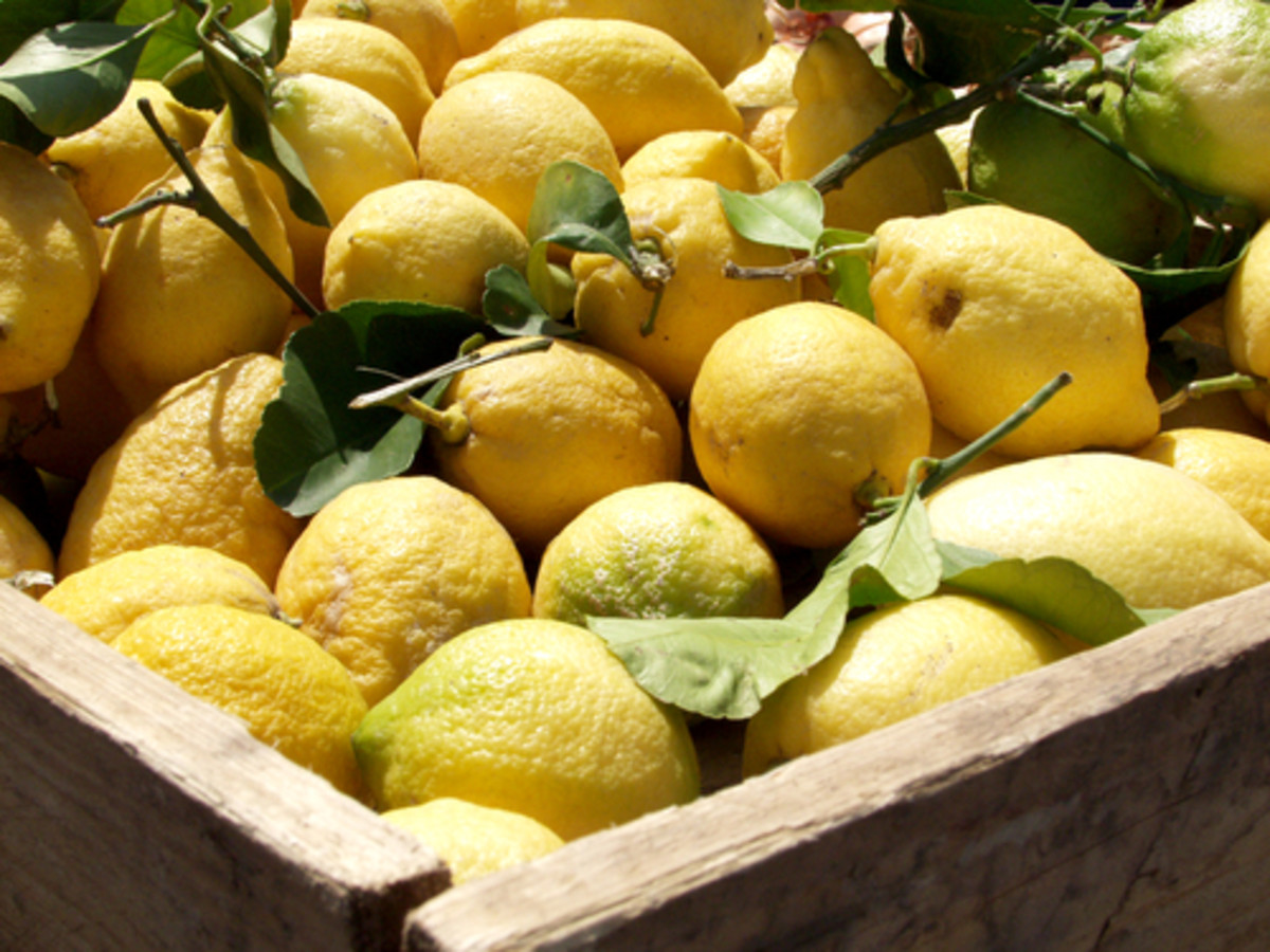 Lemons in a wooden box. Image:   maria17|Shutterstock.com