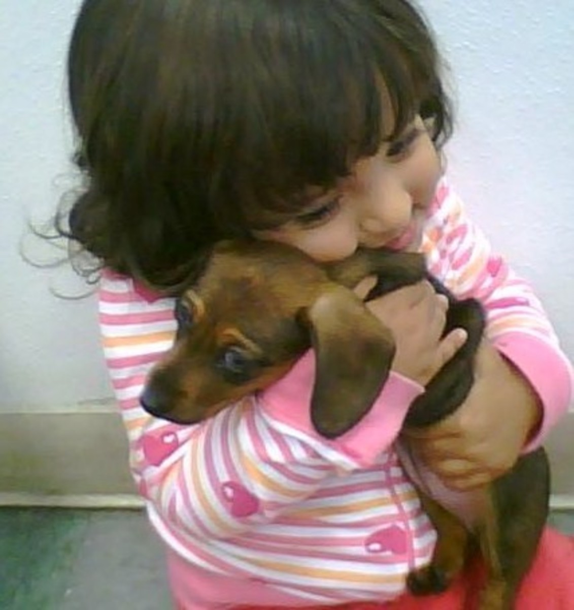 My granddaughter Faith hugging a puppy during one of our visits to the pet store.