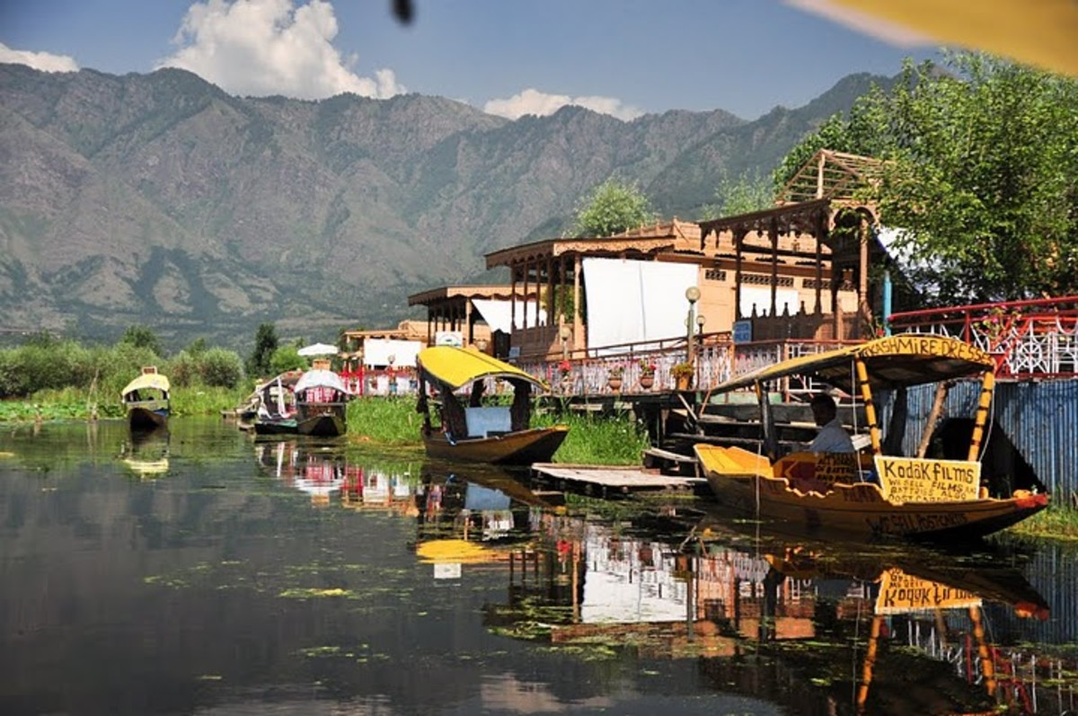 Awesome and beautiful Dal Lake in Srinagar - I spend my honeymoon in Srinagar - lovely experience