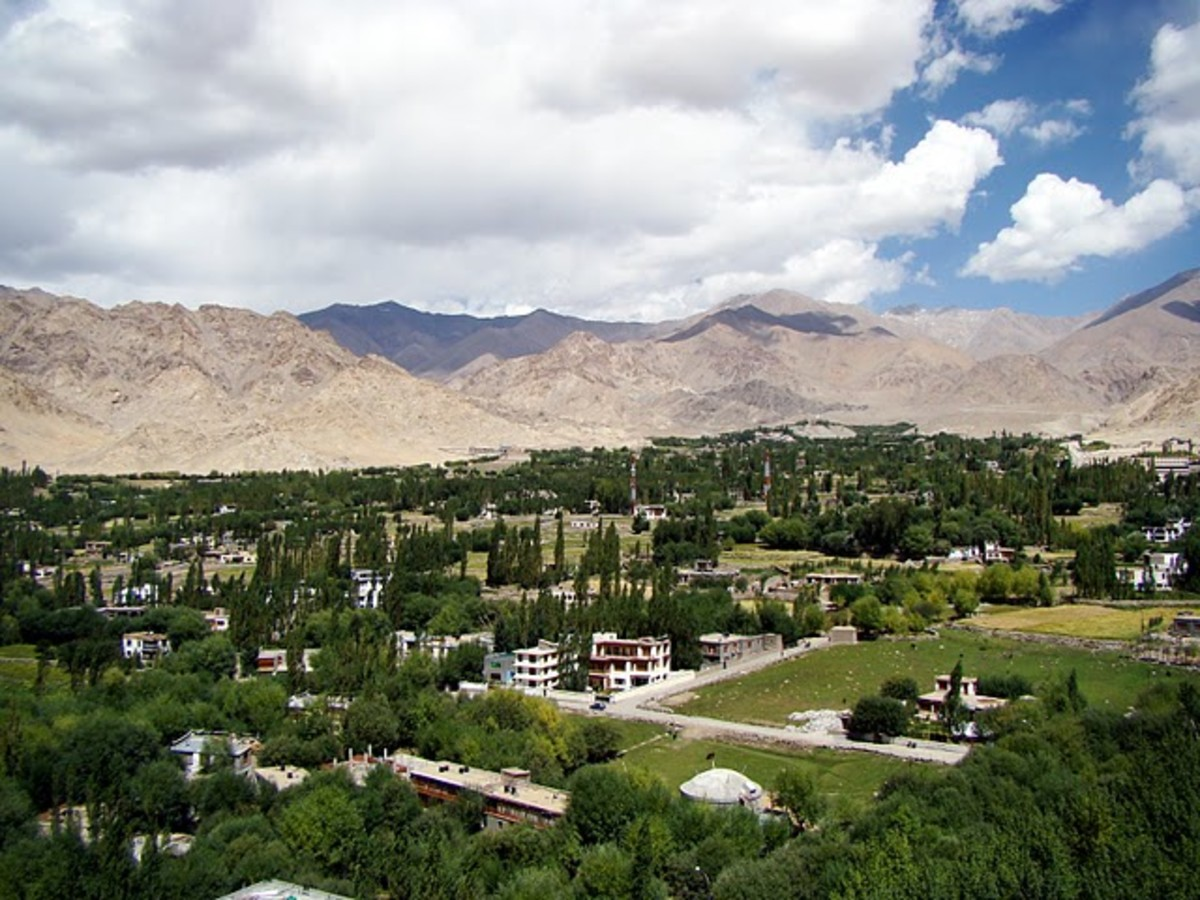 Explore the greenest part of Leh Ladakh