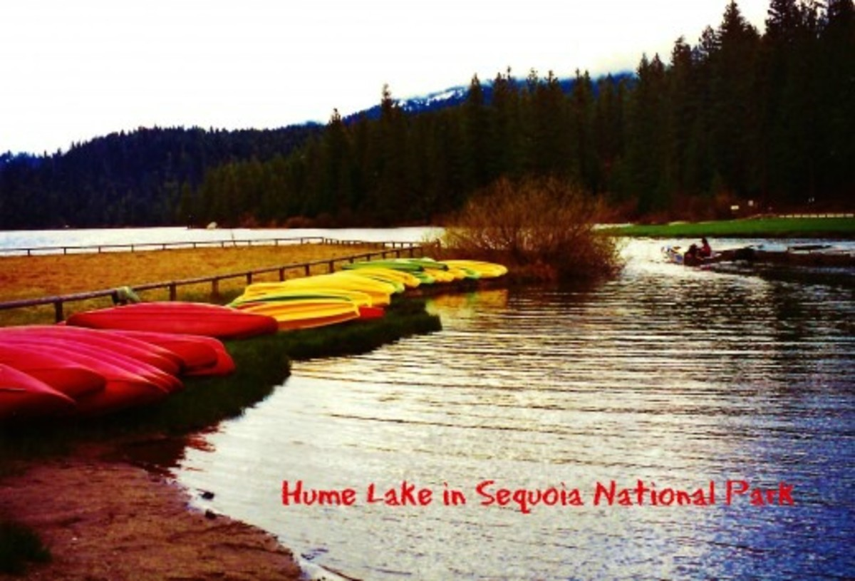 Hume Lake ~ Sequoia National Park ~ Pictures of Delightful Discovery