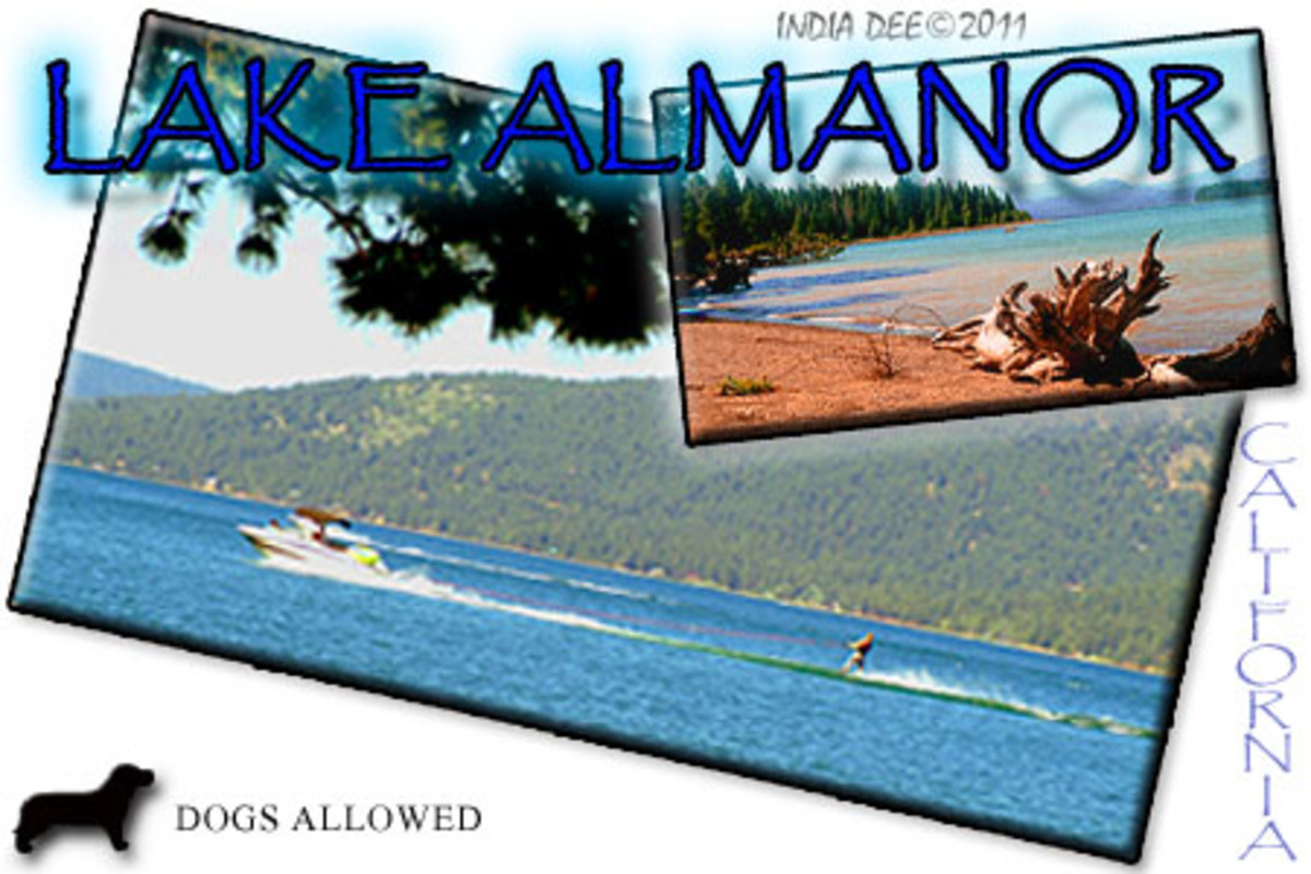 A Lake Almanor Summer Family Vacation offers great water-skiing, fishing, swimming, and many more water adventures!