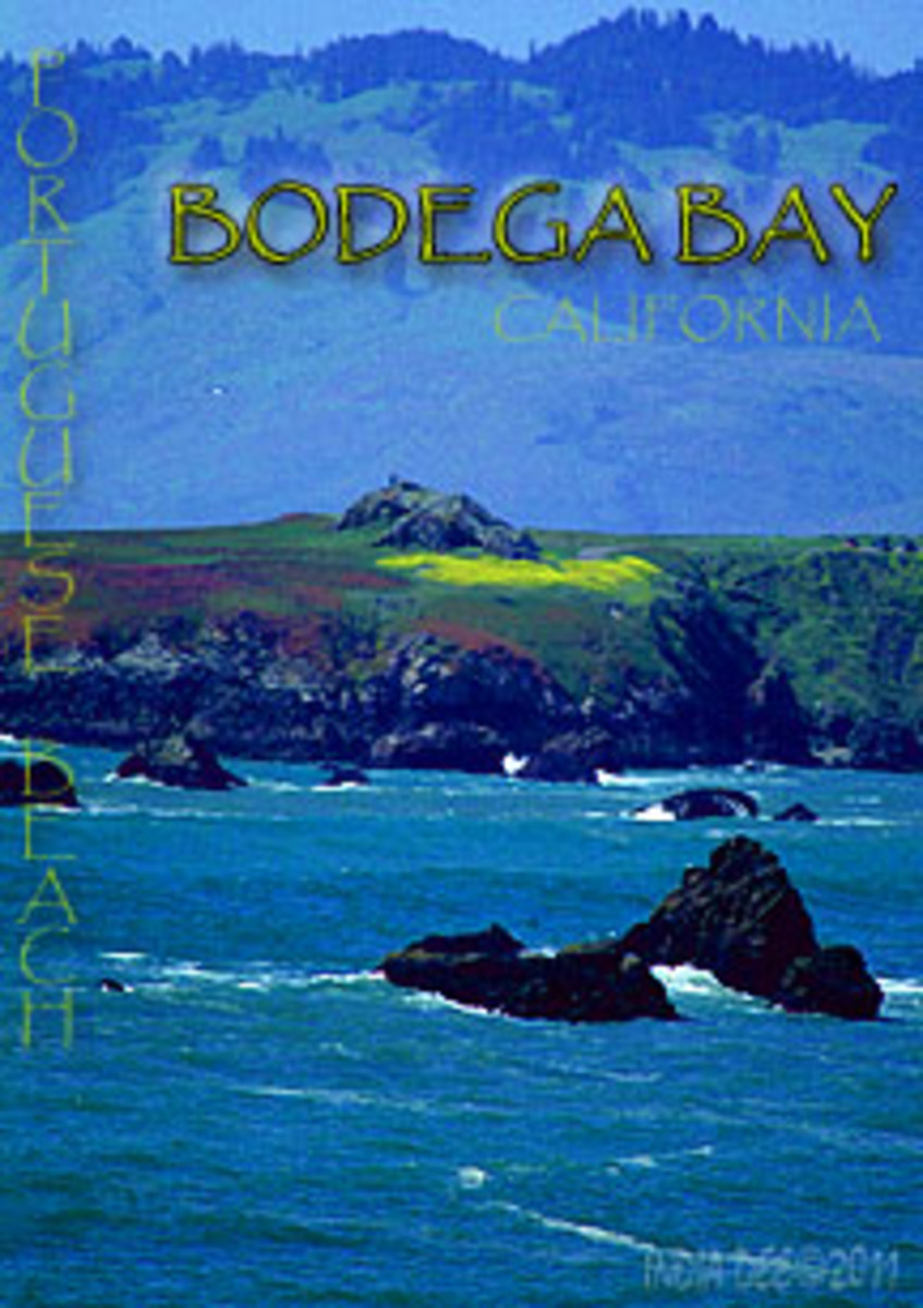 Portuguese Beach, at Bodega Bay is a great Summer Shoreline Travel Adventure Spot!