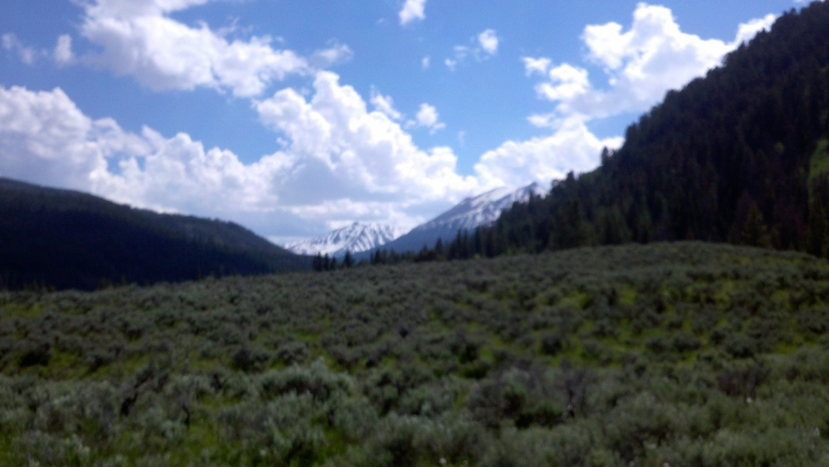 Camping Outside Yellowstone: Gallatin National Forest