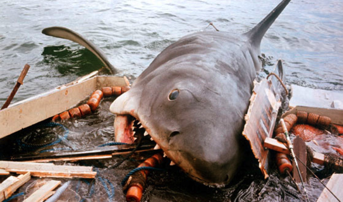 The scene from the classic movie JAWS where the villainous shark jumps onto and starts eating the stern of the boat.  Thankfully, this was not the case in this weeks episode off of Seal Island