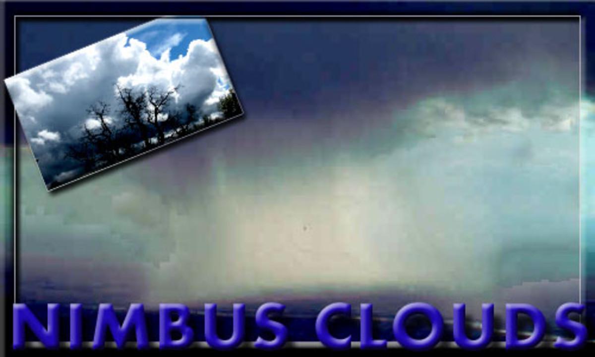 Nimbus clouds are full of rain.
