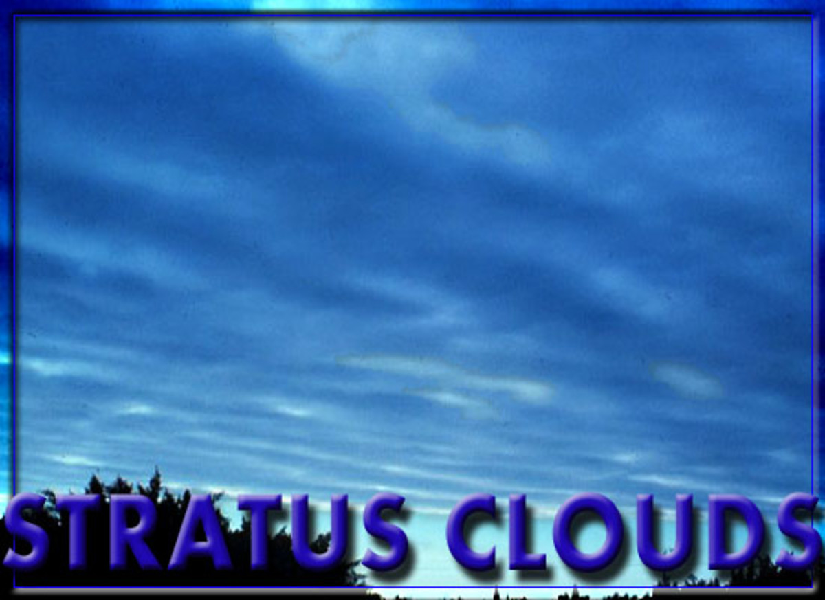 Categorizing Clouds For Kids Cloud Pictures And Project