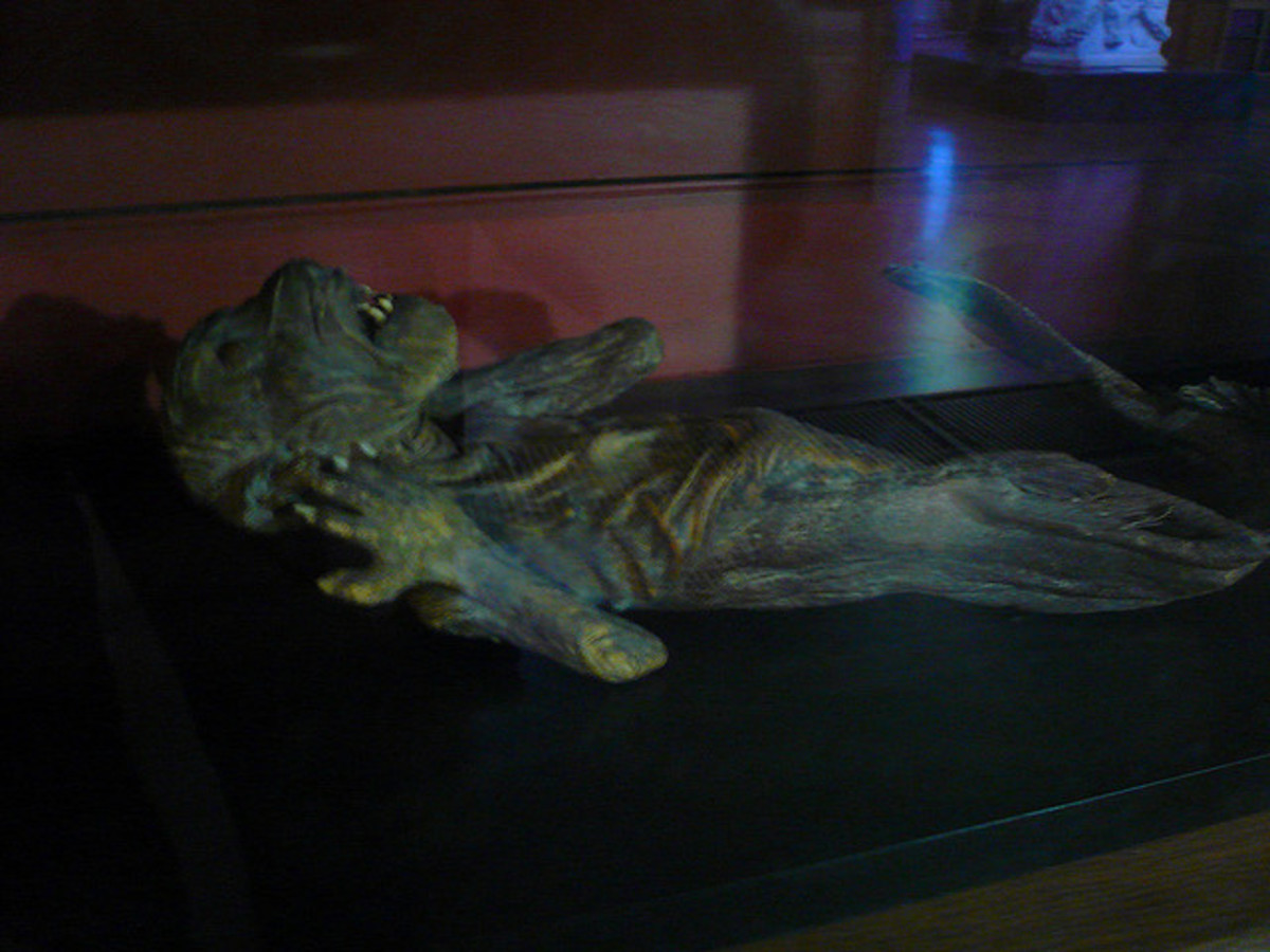 mermaid-mummies