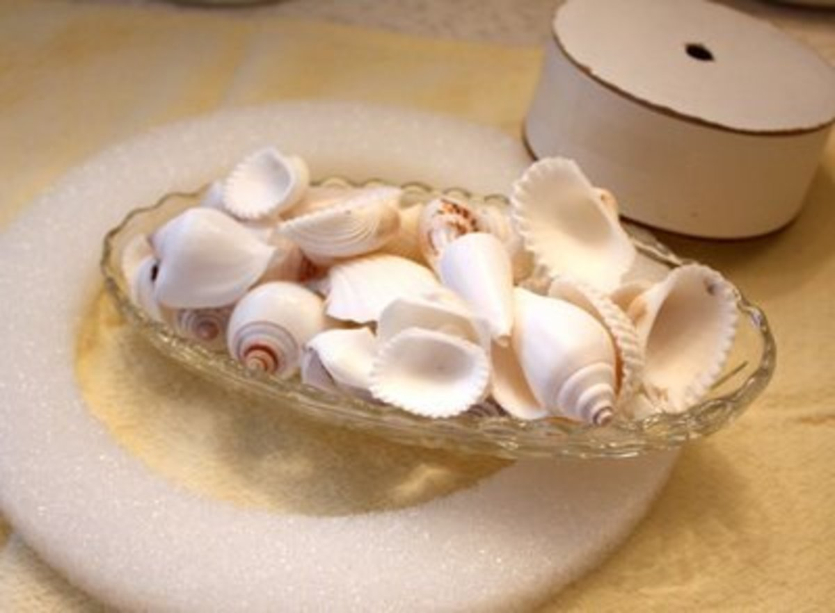 you will need seashells which you can get at the beach or at many craftstores.