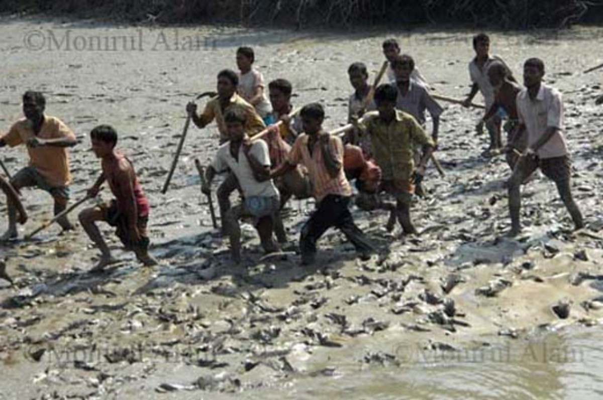 Villagers carrying away Mabud's mutilated body