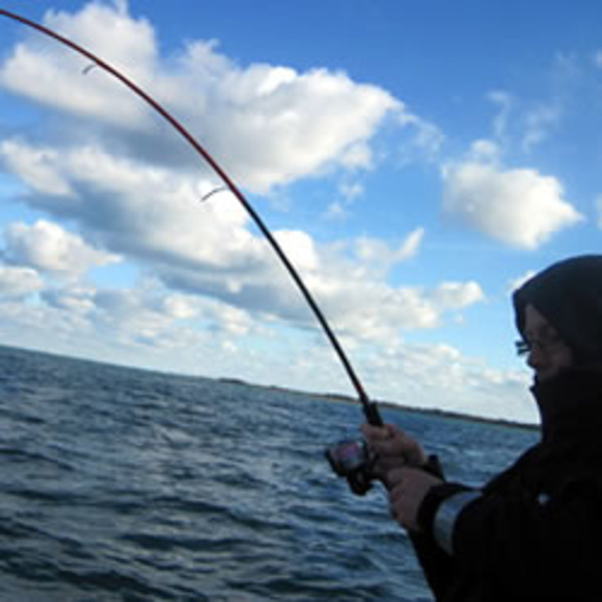 Sea Fishing - What Do I Do?