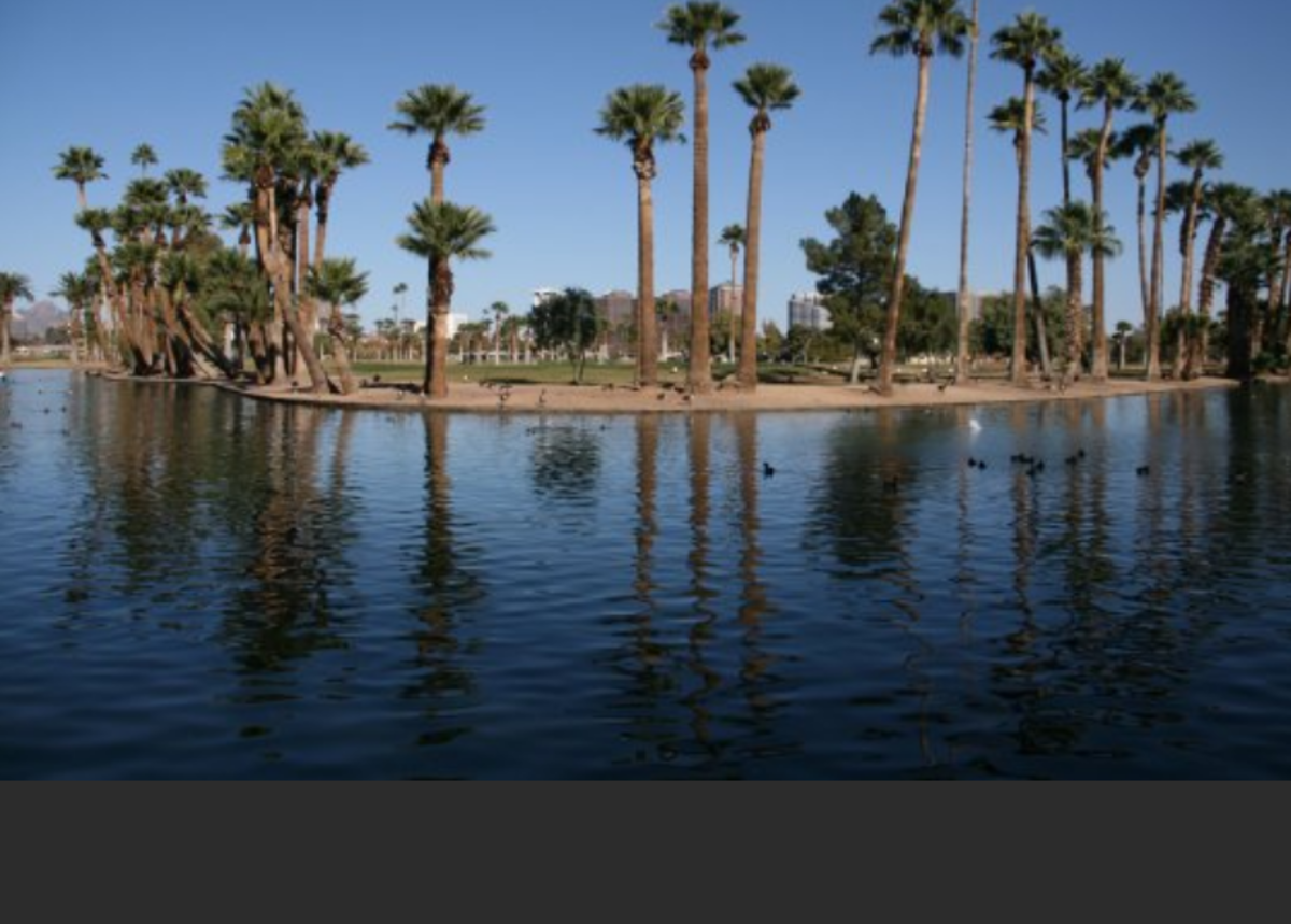 Encanto Park Lake- Lakes are generally stocked with catfish in June, September and October, and trout in November and December. View the stocking schedule for specific dates. All state regulations apply to fishing in city of Phoenix parks.