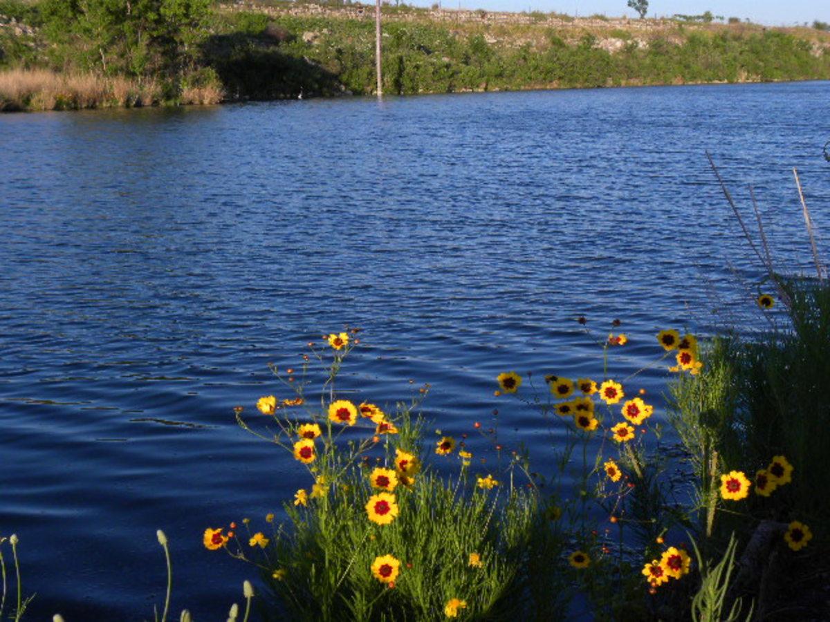 Brushy Creek Lake Park  Cedar Park TX