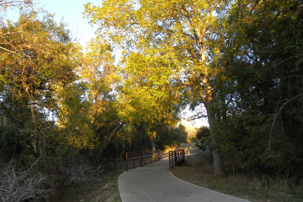 Brushy Creek Sports Park Tree Shaded Trails - Cedar Park TX