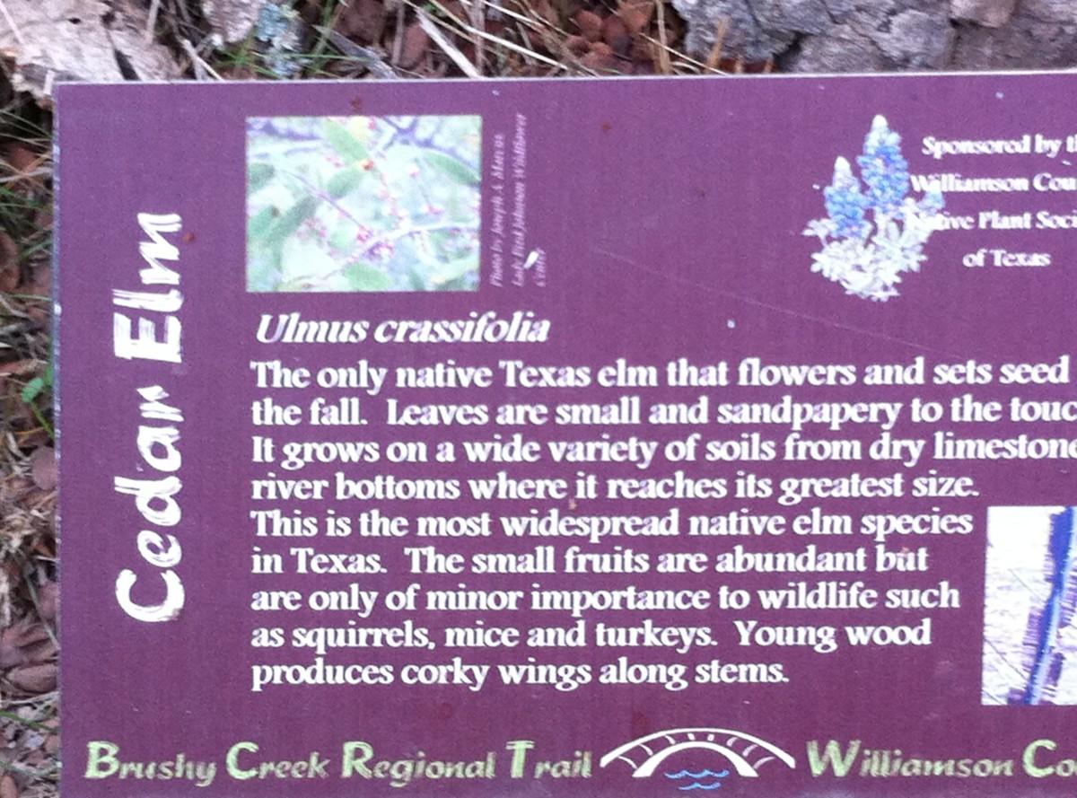 Trail Marker for Cedar Elm - Brushy Creek Sports Park - Cedar Park TX