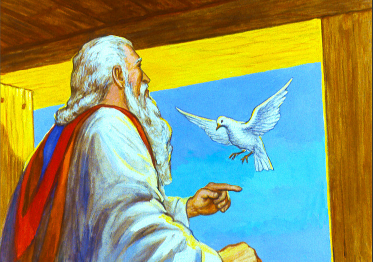 Noah and the Dove