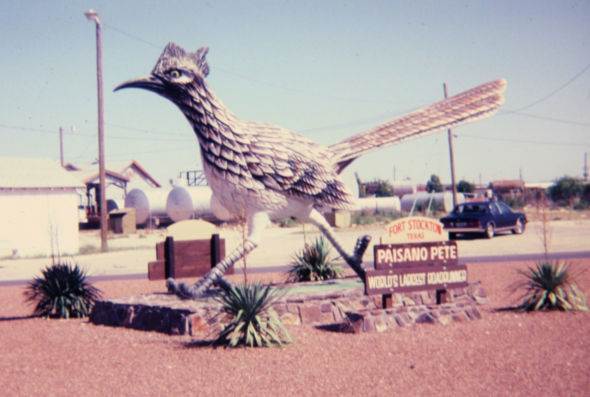 """Paisano Pete"" roadrunner sculpture in Fort Stockton, TX"